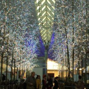 旅に出なくても楽しめる!羽田空港をぐるりとおさんぽする休日♩